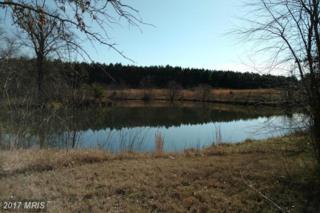 6 Little Creek Lane, Hurlock, MD 21643 (#DO9860901) :: Pearson Smith Realty