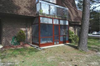 515 Glenburn Avenue 202B, Cambridge, MD 21613 (#DO9916673) :: Pearson Smith Realty