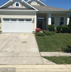 208 Regulator Drive S, Cambridge, MD 21613 (#DO9934157) :: Pearson Smith Realty