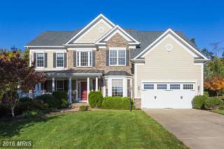 1106 Downman Place, Fredericksburg, VA 22401 (#FB9804533) :: Pearson Smith Realty