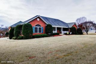 100 Chase Lane, Fredericksburg, VA 22401 (#FB9815596) :: LoCoMusings