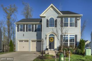 1205 Farrish Drive, Fredericksburg, VA 22401 (#FB9893639) :: Pearson Smith Realty