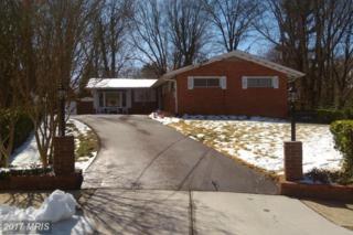 10003 Spring Lake Terrace, Fairfax, VA 22030 (#FC9891829) :: LoCoMusings