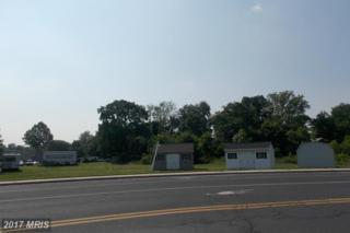 49 Washington Township Blvd., Waynesboro, PA 17268 (#FL8663482) :: LoCoMusings