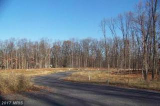 LOT 45 Old Kiln Drive, Chambersburg, PA 17201 (#FL8726722) :: Pearson Smith Realty