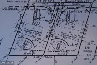 Race Track Road, Saint Thomas, PA 17252 (#FL9621046) :: LoCoMusings