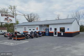 11217 Buchanan Trail E, Waynesboro, PA 17268 (#FL9640503) :: Pearson Smith Realty