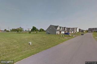 Oakley Lane, Greencastle, PA 17225 (#FL9673248) :: LoCoMusings