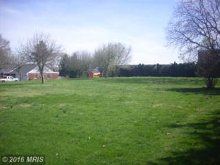 South Ridge Avenue, Greencastle, PA 17225 (#FL9725545) :: Pearson Smith Realty