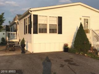 150 Medallion Drive, Fayetteville, PA 17222 (#FL9729972) :: Pearson Smith Realty