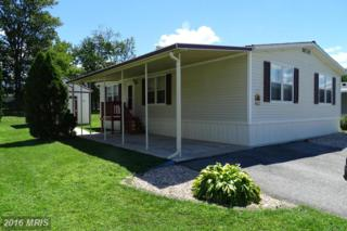 114 Cameo Drive, Fayetteville, PA 17222 (#FL9749131) :: Pearson Smith Realty