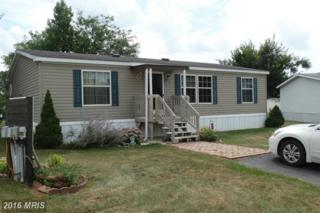 5614 Riviera Court, Fayetteville, PA 17222 (#FL9753681) :: Pearson Smith Realty
