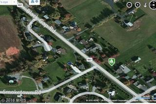 Black Gap Road, Chambersburg, PA 17202 (#FL9756451) :: Pearson Smith Realty