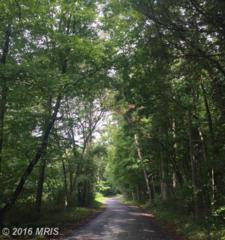 Mountain Green Road, Willow Hill, PA 17271 (#FL9758009) :: Pearson Smith Realty