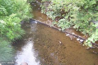 31-AC Path Road, Orrstown, PA 17244 (#FL9760012) :: LoCoMusings