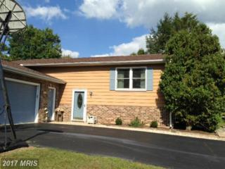 1985 Maylinn Drive, Chambersburg, PA 17202 (#FL9783364) :: LoCoMusings