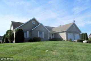 921 Cranberry Drive, Chambersburg, PA 17202 (#FL9791319) :: Pearson Smith Realty