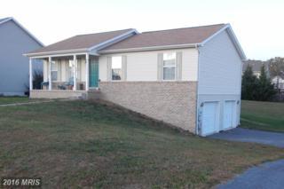 1827 Wood Duck Drive E, Chambersburg, PA 17202 (#FL9806424) :: Pearson Smith Realty