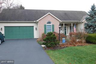 6180 Greenbriar Terrace, Fayetteville, PA 17222 (#FL9823003) :: Pearson Smith Realty
