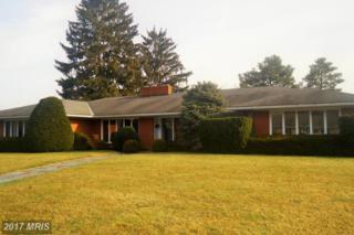 9107 Meadowbrook Circle, Waynesboro, PA 17268 (#FL9826434) :: LoCoMusings