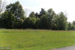 LOT 40 Grant Shook Road, Greencastle, PA 17225 (#FL9851224) :: Pearson Smith Realty