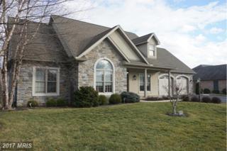 320 Sue Linn Drive, Chambersburg, PA 17201 (#FL9852786) :: Pearson Smith Realty