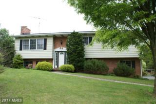 38 Carnelian Drive, Chambersburg, PA 17202 (#FL9864521) :: Pearson Smith Realty