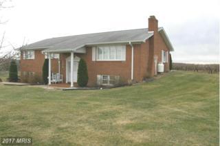 4574 Manheim Road, Waynesboro, PA 17268 (#FL9876419) :: Pearson Smith Realty