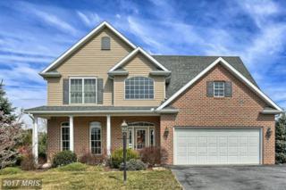 6453 Bellhurst Drive, Chambersburg, PA 17202 (#FL9884870) :: LoCoMusings