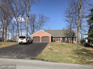6147 Greenbriar Lane, Fayetteville, PA 17222 (#FL9889333) :: LoCoMusings