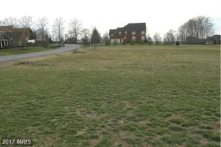 Blue Mountain Drive, Waynesboro, PA 17268 (#FL9894041) :: Pearson Smith Realty