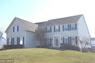 11568 Lady Dell Drive, Waynesboro, PA 17268 (#FL9898214) :: Pearson Smith Realty