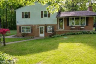 5507 Charlestown Road, Mercersburg, PA 17236 (#FL9932692) :: Pearson Smith Realty