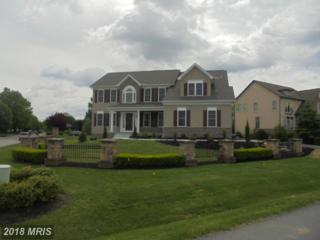 1014 Shannon Drive S, Greencastle, PA 17225 (#FL9938104) :: Pearson Smith Realty