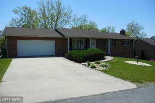 250 Jade Drive, Chambersburg, PA 17202 (#FL9940029) :: Pearson Smith Realty