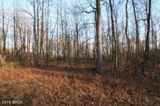 LOT 22 Axton Lane, Linden, VA 22642 (#FQ9660379) :: Pearson Smith Realty