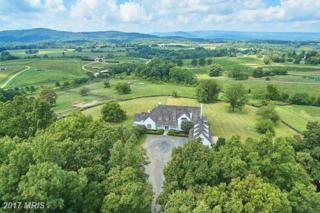 3677 Grove Lane, Delaplane, VA 20144 (#FQ9778706) :: Pearson Smith Realty