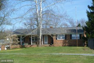 11101 Shenandoah Path, Catlett, VA 20119 (#FQ9781371) :: Pearson Smith Realty