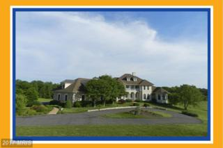 3258 Thompsons Mill Road, Goldvein, VA 22720 (#FQ9899464) :: Pearson Smith Realty