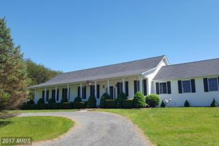 10292 Cliff Mills Road, Marshall, VA 20115 (#FQ9919607) :: Pearson Smith Realty