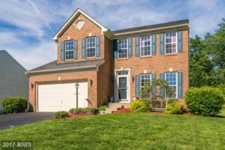 380 Preston Drive, Warrenton, VA 20186 (#FQ9935916) :: Pearson Smith Realty