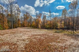 1902 Thurston Road W, Dickerson, MD 20842 (#FR8494907) :: Pearson Smith Realty