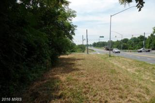 Basford Road, Adamstown, MD 21710 (#FR9718366) :: Pearson Smith Realty
