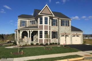 10398 Springside Terrace, Ijamsville, MD 21754 (#FR9769689) :: LoCoMusings