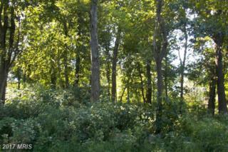 60 Water Company Road, Cascade, MD 21719 (#FR9773007) :: Pearson Smith Realty