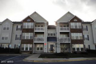 6391 Rutherford Court D, Frederick, MD 21703 (#FR9826303) :: LoCoMusings