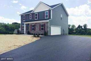 14252 Ridenour Road, Smithsburg, MD 21783 (#FR9828959) :: Pearson Smith Realty
