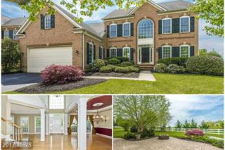 311 Glenbrook Drive, Middletown, MD 21769 (#FR9856451) :: Pearson Smith Realty