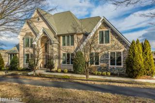 11288 Panorama Drive, New Market, MD 21774 (#FR9859525) :: Pearson Smith Realty