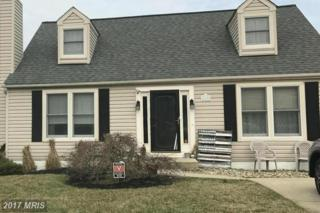 609 Northview Road, Mount Airy, MD 21771 (#FR9861201) :: Pearson Smith Realty
